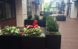 Decorative Planters with Annuals