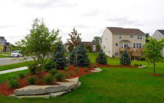 Landscape Berm Planting